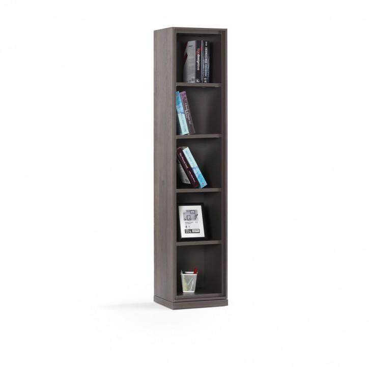 Bücherregal Venus in Grau